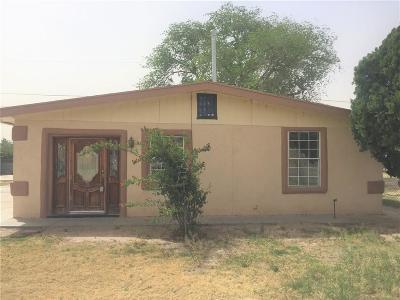 Socorro Single Family Home For Sale: 691 Bernice Court