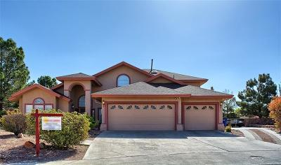El Paso Single Family Home For Sale: 1804 Pueblo Nuevo Circle