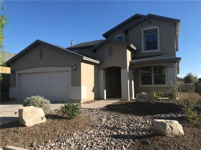 Single Family Home For Sale: 7356 Autumn Sage Drive