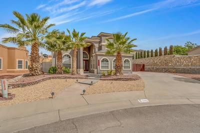 El Paso Single Family Home For Sale: 1387 Bat Masterson Drive