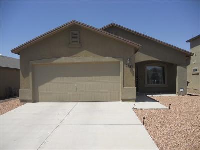 Single Family Home For Sale: 3283 Bashkir Trail