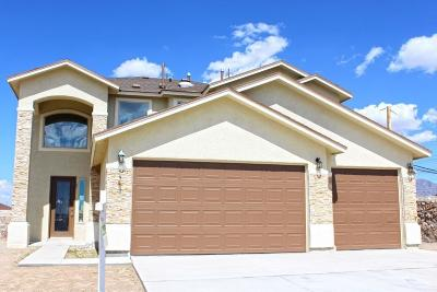 El Paso Single Family Home For Sale: 357 Bellwoode Avenue