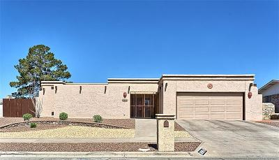 El Paso Single Family Home For Sale: 7221 Cerro Negro Drive