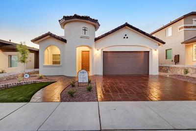 Single Family Home For Sale: 14300 Peyton Edwards Avenue