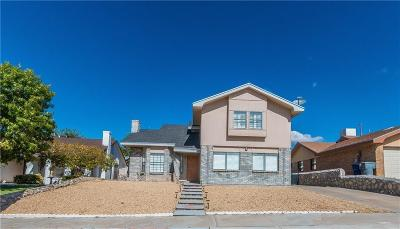 El Paso Single Family Home For Sale: 757 Dorsey Drive