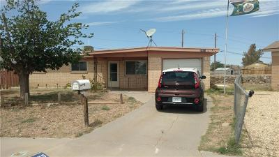 El Paso Single Family Home For Sale: 10625 Lana Place #1