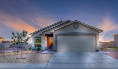 Socorro Single Family Home For Sale: 11572 Flor Liatris Drive