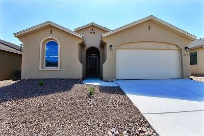 Single Family Home For Sale: 7388 Skyrocket Drive