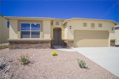 El Paso Single Family Home For Sale: 7873 Enchanted Range Drive