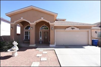 El Paso Single Family Home For Sale: 9708 El Tepeyac Avenue