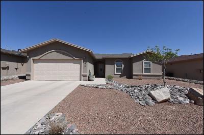 Anthony Single Family Home For Sale: 613 Torres Altos Street