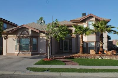 El Paso TX Single Family Home For Sale: $245,000
