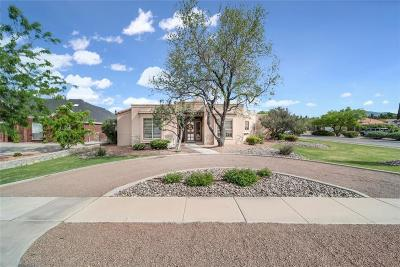 El Paso Single Family Home For Sale: 501 Autumn Willow