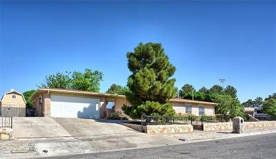 El Paso Single Family Home For Sale: 1217 Lonewood Drive