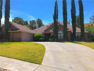 El Paso Single Family Home For Sale: 837 Cresta Alta Drive
