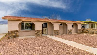 El Paso Single Family Home For Sale: 9025 Matterhorn Drive