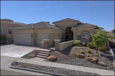 El Paso Single Family Home For Sale: 6248 Franklin Hawk Avenue