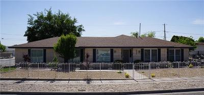 El Paso Single Family Home For Sale: 9252 Mc Cabe Drive