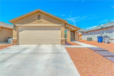 El Paso Single Family Home For Sale: 3725 Loma Jacinto Drive