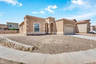 Single Family Home For Sale: 3157 Sarina Circle