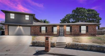 El Paso Single Family Home For Sale: 1604 Paul Harney Drive