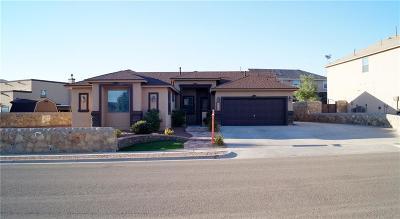 Single Family Home For Sale: 12031 Bradbury Drive