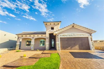 El Paso Single Family Home For Sale: 2191 Enchanted Crest Drive