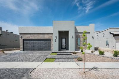 El Paso Single Family Home For Sale: 2186 Enchanted Crest Drive