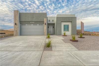 Single Family Home For Sale: 14273 Jeff Milton Avenue