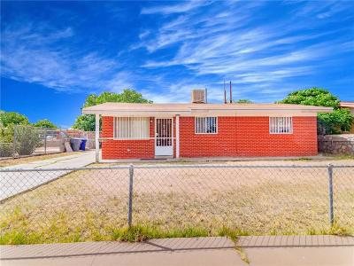 El Paso Single Family Home For Sale: 10345 Whyburn Street