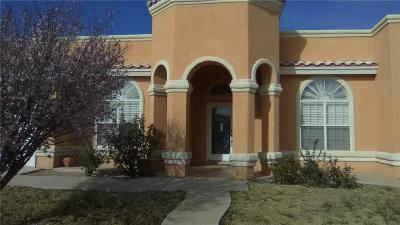 Single Family Home For Sale: 729 Al Smith