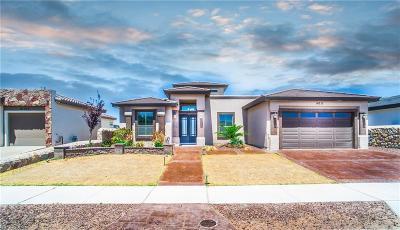 El Paso Single Family Home For Sale: 14717 Long Shadow Avenue