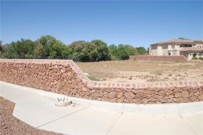 El Paso TX Single Family Home For Sale: $78,000
