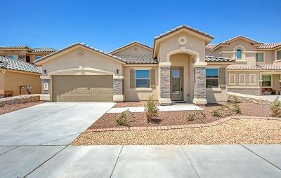 El Paso Single Family Home For Sale: 433 White Cloud Rd Drive