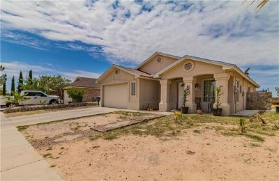 Single Family Home For Sale: 693 Desert Sage Drive