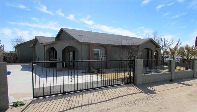 San Elizario Single Family Home For Sale: 420 Fulbrook