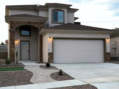El Paso Single Family Home For Sale: 489 Prime Desert Drive