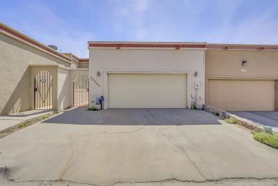 Single Family Home For Sale: 11224 Enid Wilson Lane