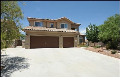 El Paso Single Family Home For Sale: 6525 Calle Bonita Lane