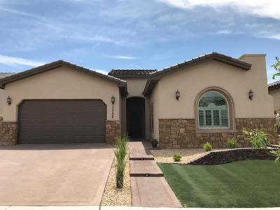 Single Family Home For Sale: 12238 Houghton Springs Drive