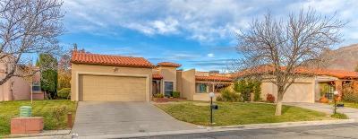 El Paso Single Family Home For Sale: 6149 Los Felinos Circle