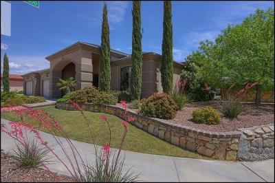 Single Family Home For Sale: 3340 Tierra Lucero Lane