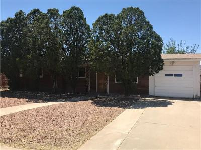 Single Family Home For Sale: 9307 Roanoke Drive