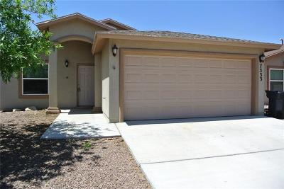 Single Family Home For Sale: 7333 Brick Dust Street