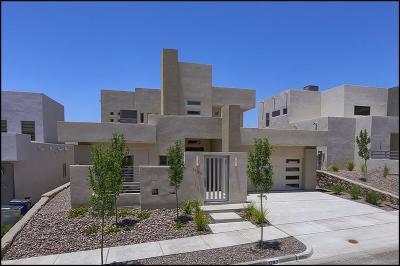 El Paso Single Family Home For Sale: 1263 Desert Mirage