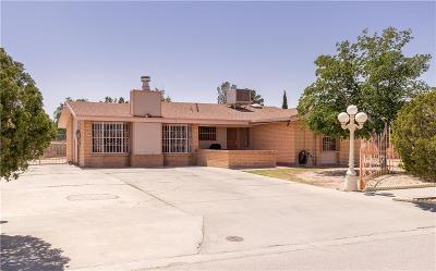 El Paso Single Family Home For Sale: 8453 Hartford Drive