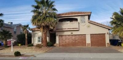 El Paso Single Family Home For Sale: 1287 Rosa Guerrero