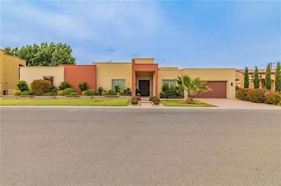 El Paso Single Family Home For Sale: 4049 Boy Scout Lane