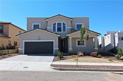 El Paso Single Family Home For Sale: 6192 Tranquil Desert Drive