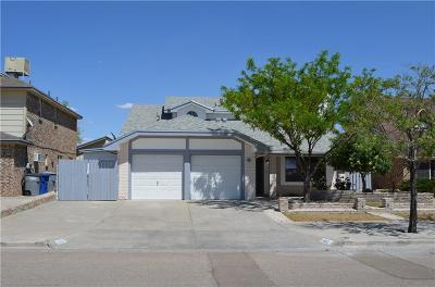 El Paso Single Family Home For Sale: 1812 Gus Moran Street
